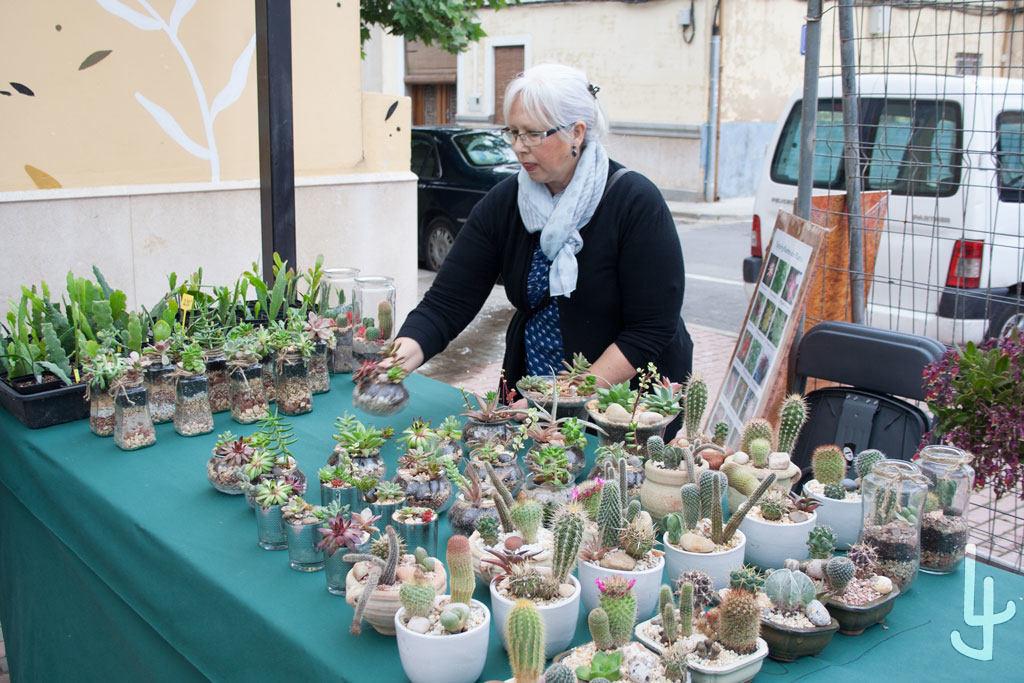 XII Congreso Cheste Cactus y Suculentas.