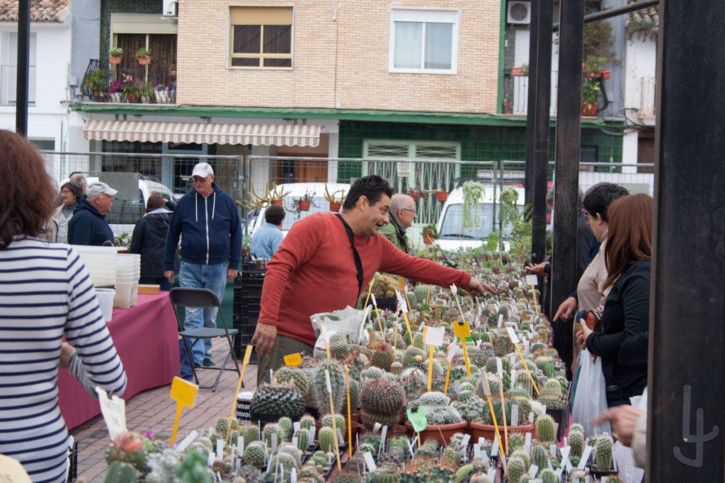 XII Congreso Cheste Cactus y Suculentas. M. Mestre