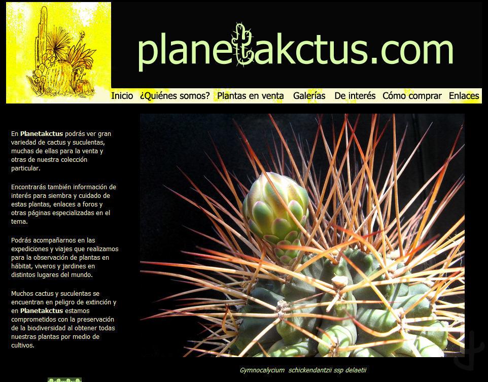 http://planetakctus.com la tienda de Lorette.